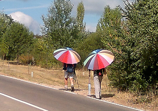 pilgrim_umbrella_road